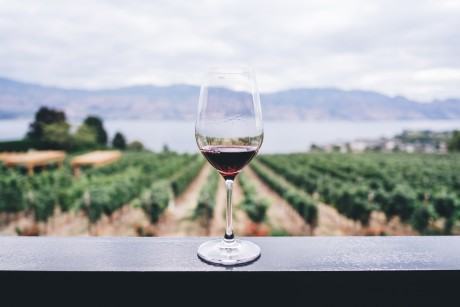 Napa Valley Wine Tour Package